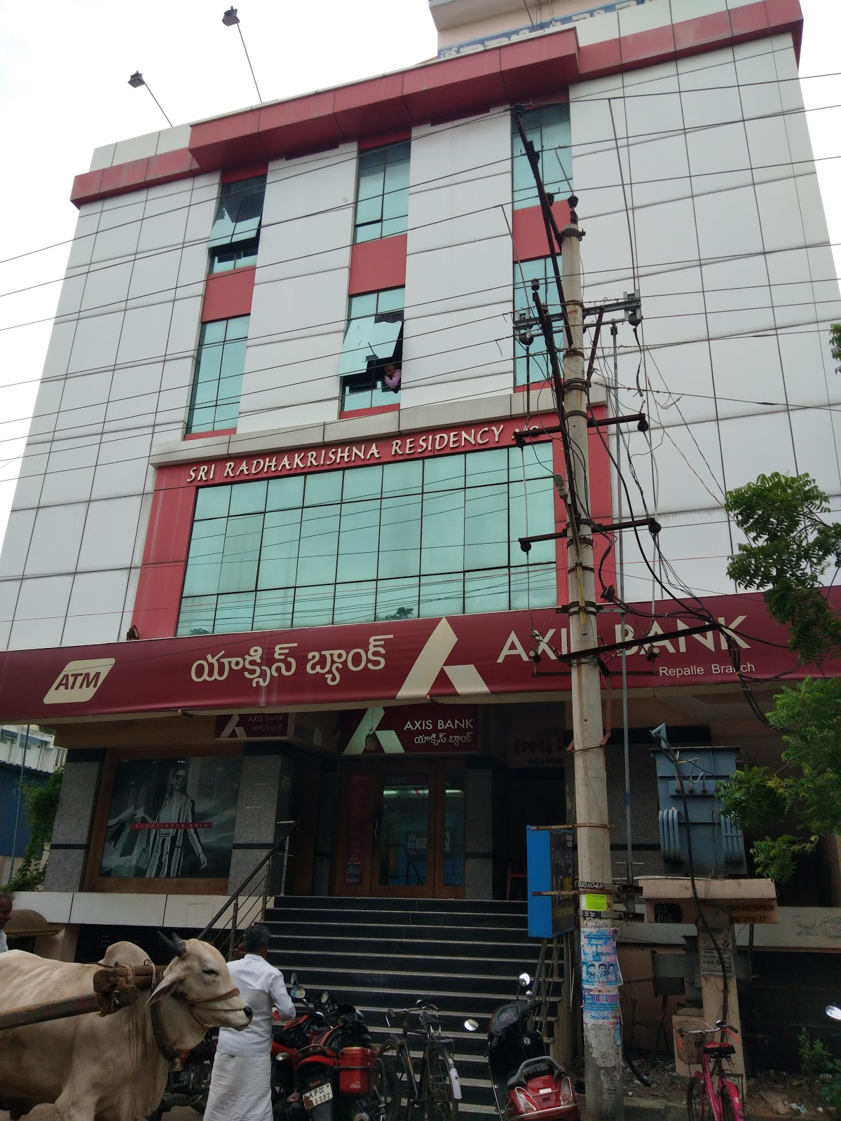 blood bank Axis Bank near Guntur Andhra Pradesh